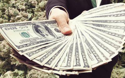 Sólo el 40% de los negocios en la industria del Cannabis tienen cuentas bancarias
