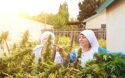 Monjas luchan para mantener su negocio de cannabis en California