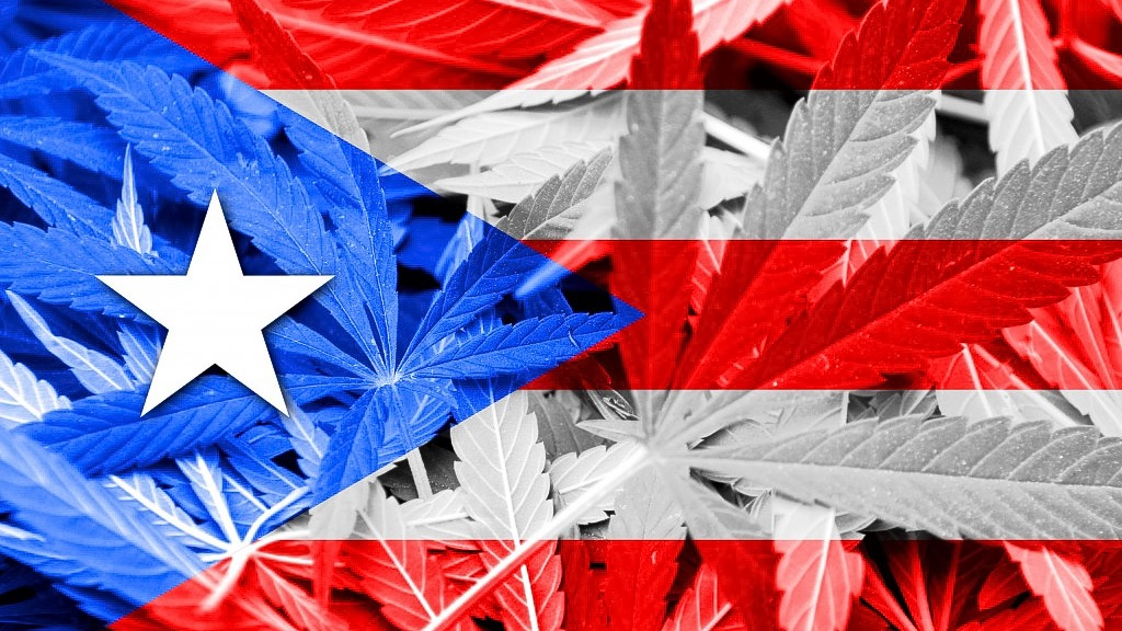 Departamento de Salud publica nuevo Reglamento sobre el Cannabis Medicinal