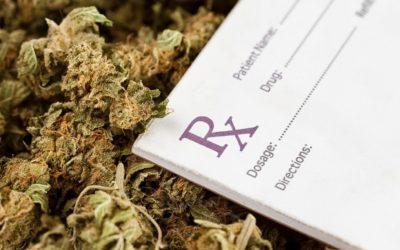 Médicos se preparan para recomendar Cannabis